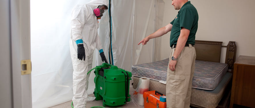 Houston, TX mold removal process